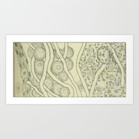 Vintage Cell Biology Art Print by Blue Specs Studio