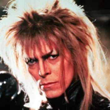 Labyrinth Movie Poster 16inx24in