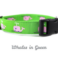 Whales in Green Dog Collar - Nautical Dog Collar in Pink and Green for Boys and Girls