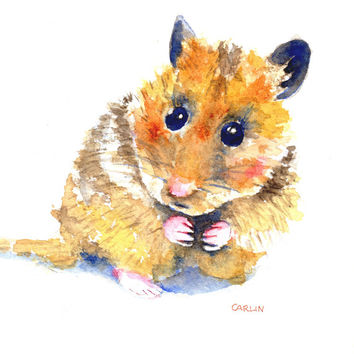 Hamster Painting, ORIGINAL  Watercolor, Gift ready 5x7 Hamster art matted to 8x10, pet hamster, cute rodent,nursery, child, decor, wall art