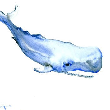 Sperm Whale painting original watercolor 12 x 9 in nursery children room sea world nautical beach house aquatic wall art
