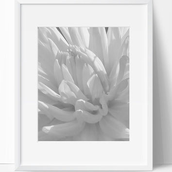 Printable Art, Flower Art, Instant Download, Flower Printable, Digital Print, Flower Print, Wall Art, 8x10, Flower, Black White, Art