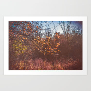 Fading Art Print by Faded  Photos