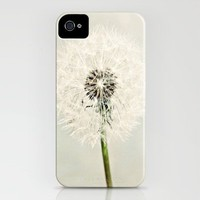 Dandelion Dreams  iPhone Case by Tracey Krick | Society6