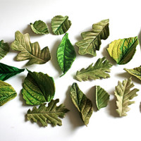 Edible Sugar Woodland Foliage, 18 assorted