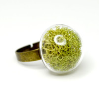 Green moss in hand blown glass adjustable ring.