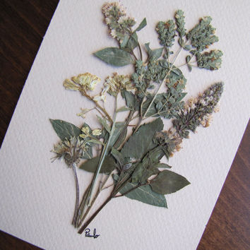 Original Pressed Flowers Artwork Unframed with Real Dried Flowers