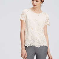 Lacy Crepe Tee | Ann Taylor