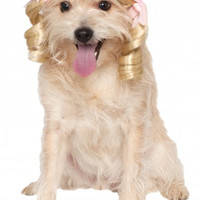 Cheerleader Blonde Dog Wig