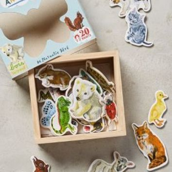 Nathalie Lete Illustrated Creatures Magnets in Multi Size: Set Of 20 Gifts