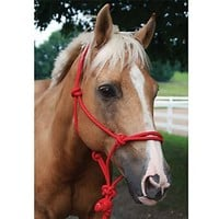 Basic Poly Rope Halter w/Lead