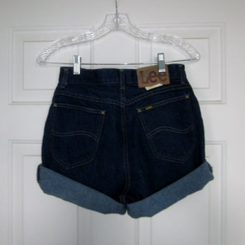Vintage Hipster High Waisted Shorts Lee Jean Shorts, Womens 10 Grunge High Waist Denim Shorts, Cut Off Denim Shorts, Made in USA