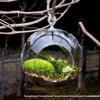 Hanging Glass Globe DIY