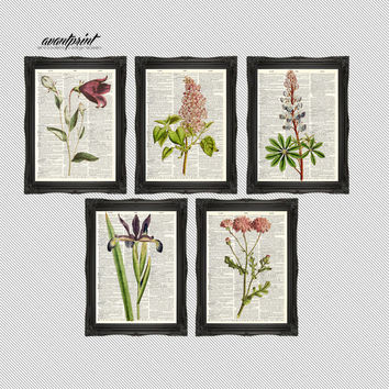 Set of 5 Precious Purple Perennial Botanical Prints on Unframed Upcycled Bookpages