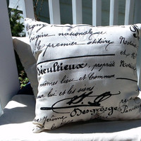 decorative throw pillow 17x16