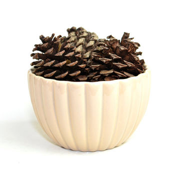 Haeger 8718 Ribbed Ceramic Planter Bowl - Elegant Neutral Beige / Cream Color - Garden Planting Decorative - Vintage Home Decor