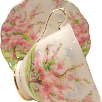 Royal Albert Blossom Time Tea Cup and Saucer-Hampton Style