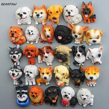 1Pcs/set Dog Magnet D?_cor
