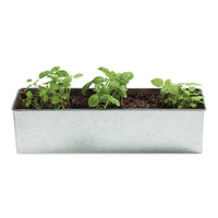 Foodie Garden - Basil-o-holic :: The mental_floss Store