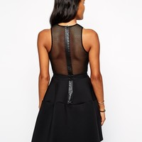 Shakuhachi Tulip Mesh Dress in Neoprene