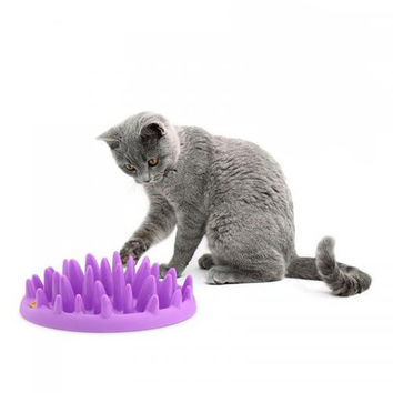 Cat Catch Interactive Hard Silicone Slow Food Feed