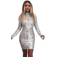 Womens Sexy Silver See Though Tattoo Dresses Party Night Club Party Birthday Dress Celebrity Vintage Sequin Bodycon N245 Z30