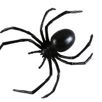 Black Widow Spider 6inch