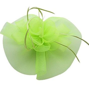 Ahugehome Fascinator Hair Clip Headband Feather Flower Pillbox Hat Cocktail Tea Party