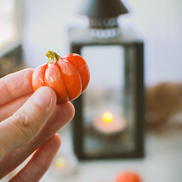 Pumpkin Brooch, Halloween vegetables jewelry, vegetarian jewelry