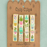 Chip Clips - Succulents