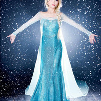 High Quality Handmade Disney Elsa Dress Queen Elsa Dress Princess Elsa Dress Pattern Adult Elsa Dress Hand-made Cosplay Costum Made to Order