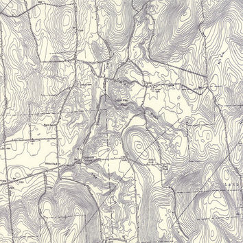 Alpine by Erin Michael for Moda Fabrics, #26101 20, Topographical Map Fabric