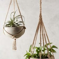 Kiri Wood Hanging Planter by Anthropologie in Natural Size: