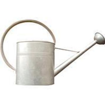 Panacea Products - Vintage Galvanized Watering Can