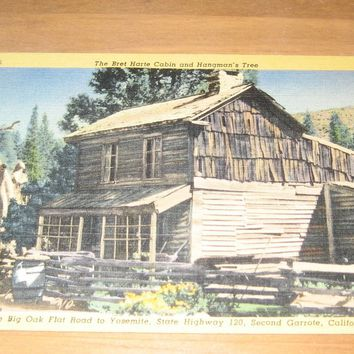 Vintage The Bret Harte Cabin And Hangman's Tree Postcard