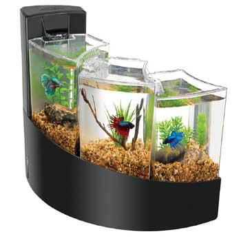 Aqueon betta falls aquarium kit from look ry for Does petco sell fish
