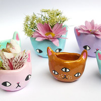 PRE-ORDER *** Tiny Kitty Planter