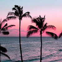 Hawaiian Sunset at Rosa Rose Pink tumblr