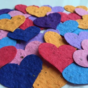 Plantable Heart large Bright Seed Confetti 50 piece- Wildflowers grow, gift, jewelry tag, wedding