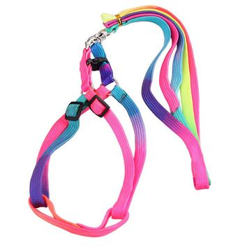Best Selling Colorful Animals Cat Leash