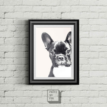 French Bulldog Print, French Bulldog Wall Art Print, Custom Pet Dog Portrait, Dog Photo, Black and White, Instant Download, Wall Art