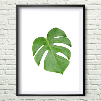Tropical Leaf Print, Monstera Print, Printable Art, Palm Art Print, Minimalist Art, Textured, Instant Download, Wall Decor *92*