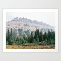 Mountain Forest - Landscape Photography Art Print by CupofTJ