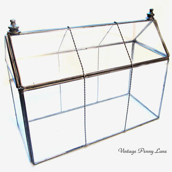 Vintage Glass Terrarium / Greenhouse Display Case