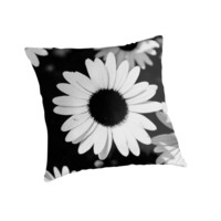 Daisies, Black and White by kabrown