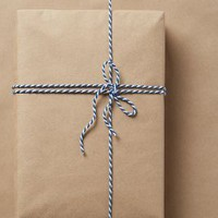 Knot & Bow Kraft Paper Gift Wrap in Kraft Size: One Size Gifts