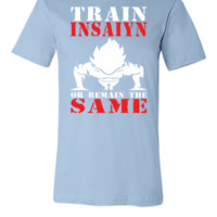 Train Insaiyan Remain Same