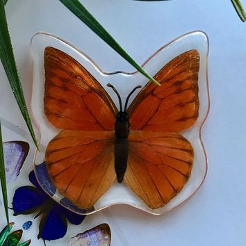 Orange Albatross Butterfly Magnet