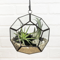 Dodecahedron Faceted Air Plant Hanging Terrarium