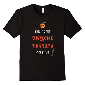 This is my Awesome Grandma Costume T Shirt
